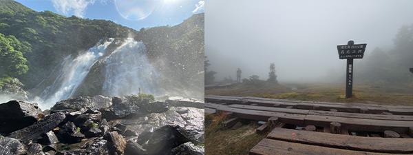 屋久島の滝と霧